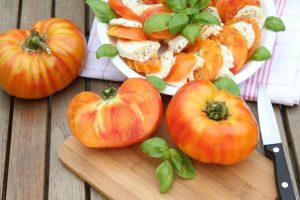 Geschichte der Tomate Historie