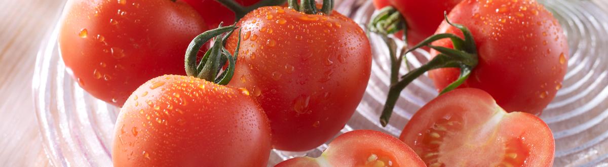 Tomaten Sind Als Nahrungsmittel Sehr Beliebt Infos