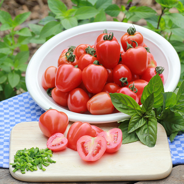 Tomate 'Gardenberry'
