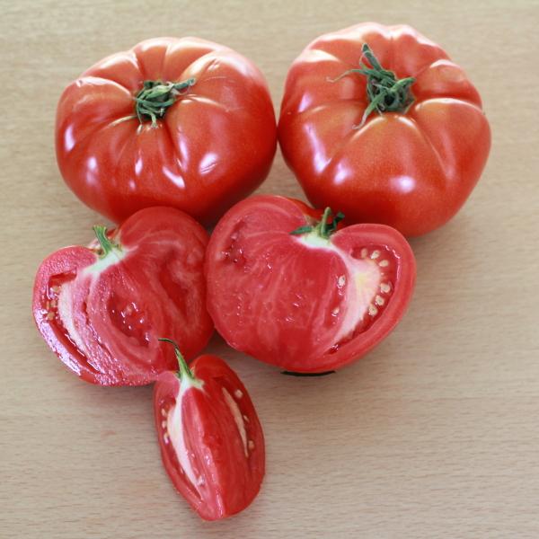 Tomate ''Marmande''