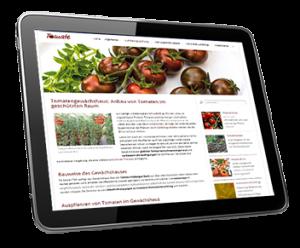Sowohl Tomatenpflanzen als auch Tomatensamen können inzwischen problemlos im Internet erworben werden – auch in unserem Onlineshop!