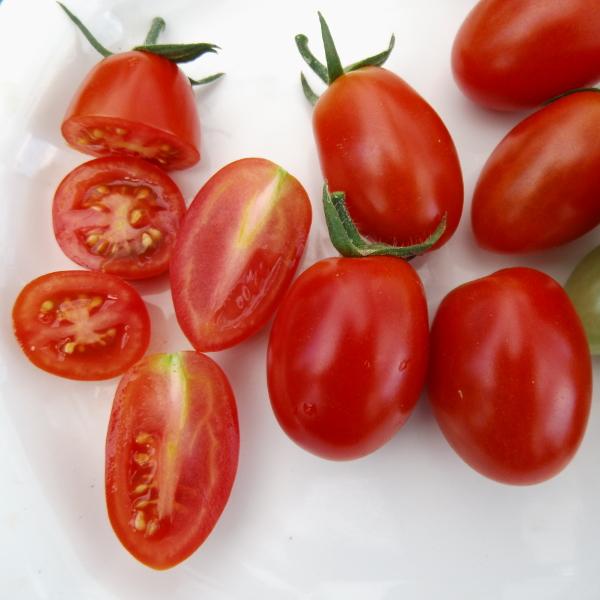 tomate 39 roma 39 saftige roma tomate ideal zum kochen. Black Bedroom Furniture Sets. Home Design Ideas