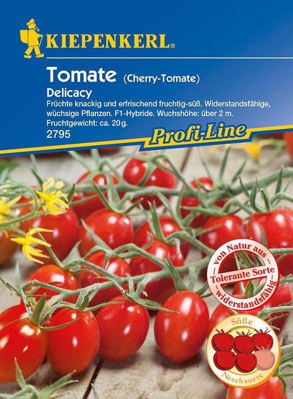Mini-San-Marzano-Tomate 'Delicacy' (F1) von Kiepenkerl